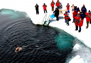 Polar bear swimmer at North Pole